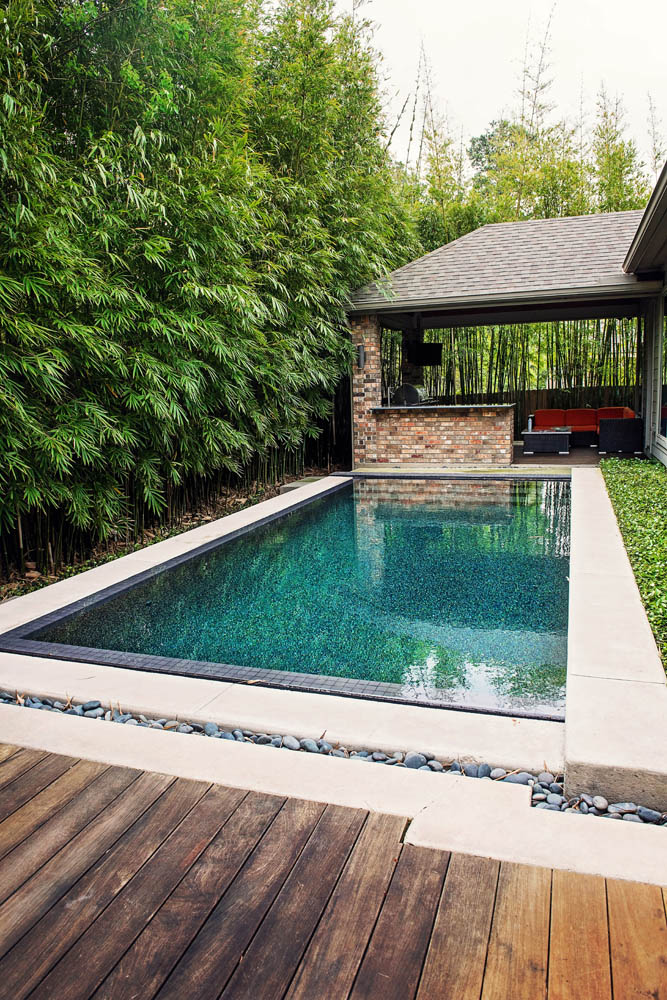 Pool Photos Houston The Woodlands Tropical Pools Spring Traditional