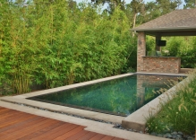 Modern-swimming-pool-with-spill-over.-surrounded-by-Bamboo-and-mexican-beach-pebbles